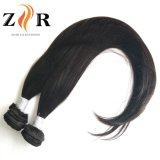paquets droits de cheveux humains de Remy de Vierge malaisienne de la pente 7A
