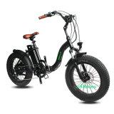 Bike батареи лития мотора E-Bike 48V 750W снежка пляжа задний электрический