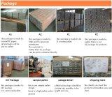 China en el exterior de madera revestimientos compuesto de plástico hueco