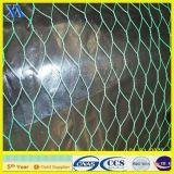 Engranzamento de fio da rede de Hexaonal da galinha (XA-HM41)