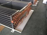 Doppelt-Seite Schlag-Typ Dachspitze-Verdampfungsweg in der Kühlvorrichtung für Garnelen und Fleisch