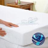 Protezione impermeabile del materasso della prova dell'errore di programma di base di formato della regina - il vinile libera