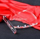 De Toekenning van de Trofee van het Kristal van de Levering van de Fabriek van Pujiang
