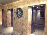 Imperial veia de madeira polida em mármore ladrilhos&Brames&Bancada