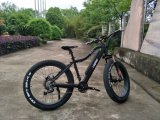 250-350Wブラシレスモーター脂肪質の電気バイク