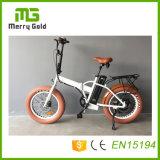 Малый электрический E-Велосипед Bikes 48V 500W с En15194 тучной автошиной складное Ebikes