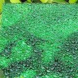 Het nieuwe Type In reliëf gemaakte Stevige Blad van het Polycarbonaat met 10 Jaar van de Waarborg