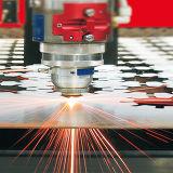 Tagliatrice di CNC del metallo del laser della fibra con la sorgente di laser di Ipg
