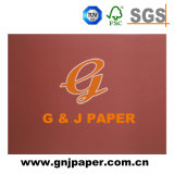 Documento basso decorativo della carta da parati della mobilia di nuovo disegno di prezzi di fabbrica