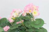Une fleur artificielle qui pendaient de haute qualité Pennywort pour décorer de jardin