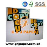 Documento della polpa riciclato marca matrice A4 con o senza il pallet