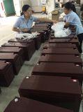 De Accu van Np150-12 12V 150ah UPS