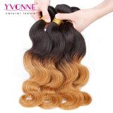 イボンヌの新しい方法によって着色される毛のOmbreの毛の波状毛
