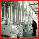 linea di produzione automatica compatta del riso 120t/D