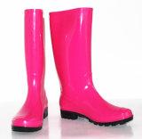 Gaines de pluie de PVC de femme, gaines transparentes colorées