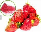Natürliches organisches Erdbeere-Auszug-4:1 ~20: 1, Polyphenole und Vitamin C