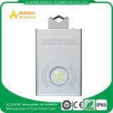 12W 운동 측정기를 가진 태양 LED 도로 램프 정원 빛