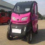automobile elettrica del motorino 1000W per la persona 3
