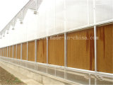 Mur de refroidissement de refroidissement de garniture de peigne de miel