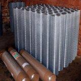 까만 PVC는 직류 전기를 통한 용접한 철망사 Rolls를 입혔다