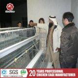 Специализированные продукты гальванизировали дешевое оборудование цыплятины клетки птицы