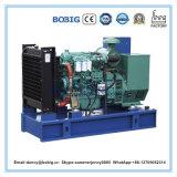 Precio barato 80kw Ricardo grupo electrógeno diesel