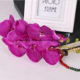 Bello fiore decorativo della seta artificiale dell'orchidea del mazzo del fiore del lattice