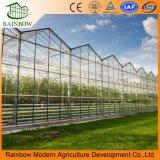 Vidro de Venlo Comercial/agrícolas das emissões para tomate e pepino/Pimenta/berinjela