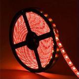 La pianta flessibile della striscia di CC LED di volt impermeabile 24V di alta qualità coltiva gli indicatori luminosi