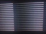 خارجيّ/داخليّ فيديو [لد] [ديسبلي بنل] لأنّ يعلن الصين مصنع