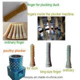 Poulet en acier inoxydable pinçant Plucker Plucker Volaille la machine