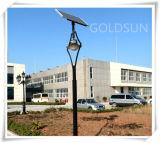 Lumière solaire de jardin de DEL, lumière d'horizontal