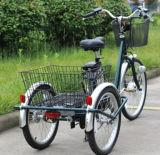 Elektrische Driewieler van de Driewieler van de Prijs van China de Nieuwe Grote voor Gehandicapten