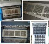 Máquina automática de la bandeja del huevo de la calidad estupenda