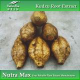 Выдержка 10~99% Puerarin корня 100% естественная Kudzu