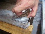 Hoja de acero inoxidable AISI 304 con acabado de espejo