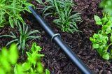 """정원은 - 직업적인 급료 - 충분히 6개의 """" 길이 - 내구재 11 계기 금속 강철 -를 분류한다 (또한 SOD 물림쇠이라고, 정원 스파이크, 담 닻 부르는, 조경 Fabr"""