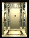 Professionele fabrikant van de lift