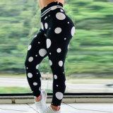 Mulheres tecidos stretch Sport Perneiras Activo Skinny amassar mechas Legging topo a topo