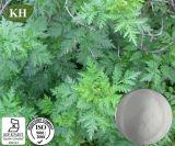 ArtemisiaのAnnuaのエキスの粉Artemisinin 99%