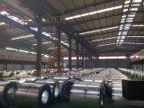 Zn-Beschichtung galvanisierter Stahlring und galvanisierte Stahlstreifen