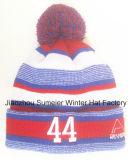 Free Sample Style Fashion Knitted Beanie Hat Boné de inverno Cap bordado (S-1017)