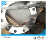 Ss304 Ss316 forjó los bordes del FF 10k de la compensación del acero inoxidable de JIS