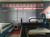 Grand coupeur de laser de commande numérique par ordinateur de feuillard de pouvoir, machine de découpage pour l'aluminium, acier, de plaque métallique