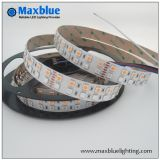 DC12V/24V 144LED/M Double Rangée de LED SMD5050 RGBW Strip Light