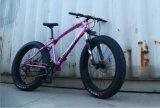 """26 """" *4.0 """" جبل درّاجة إطار العجلة سمين يوسع إطار العجلة درّاجة مع 21 سرعة"""