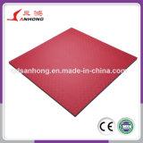 Couvre-tapis de verrouillage d'étage de mousse d'EVA de type d'art martial de Taekwondo
