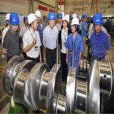 De aangepaste Kneedbare Trapas van de Compressor van de Lucht van het Gietijzer, de Trapas van de Dieselmotor