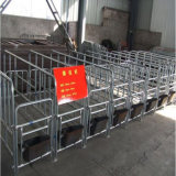 10飼い葉桶のGroupの雌豚Locating Crates/Pig Crates/Sow Persition Crates