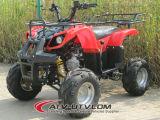 La gasolina en Quad/ATV